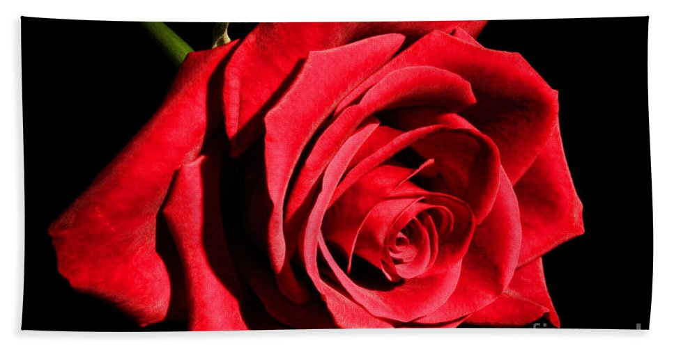 For You My Love Beach Towel featuring the photograph For You My Love by Mariola Bitner