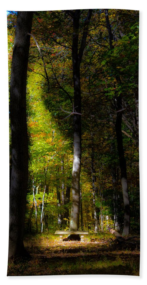 Bench Beach Towel featuring the photograph Forest Bench by Jonny D