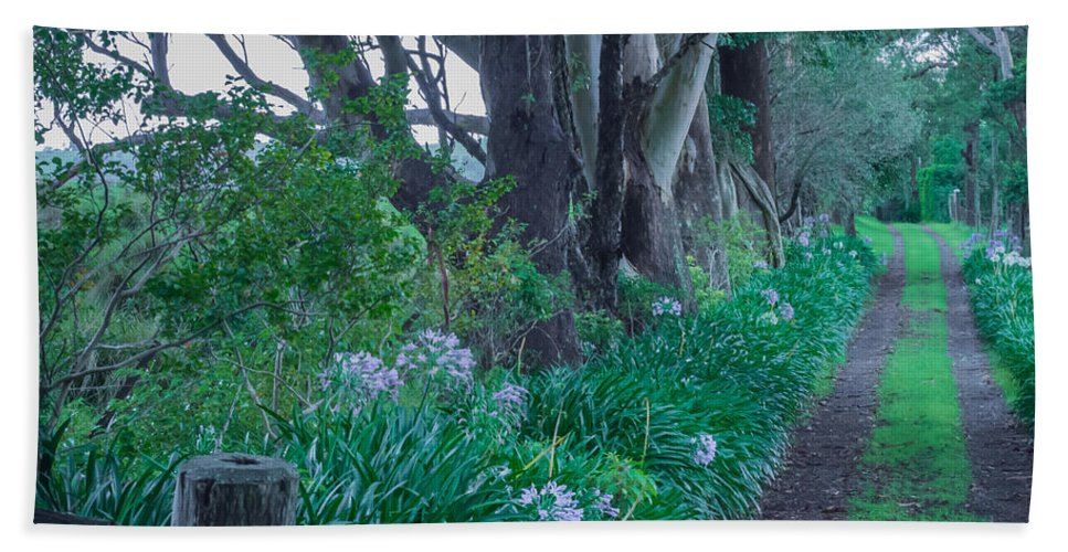 Forest Beach Towel featuring the photograph Forested Path by Kaleidoscopik Photography