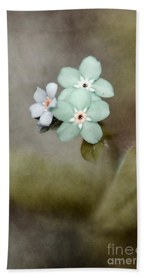 Flowers Beach Towel featuring the photograph Forget Me Not 03 - S07bt07 by Variance Collections