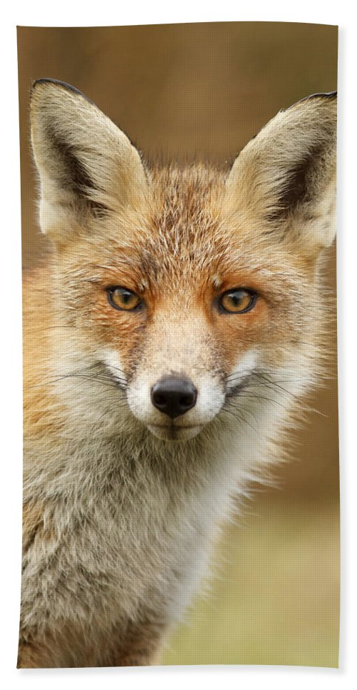 Afternoon Beach Towel featuring the photograph Foxy Face by Roeselien Raimond