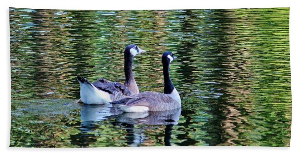 Duck Beach Towel featuring the photograph Friends Side By Side by Cynthia Guinn
