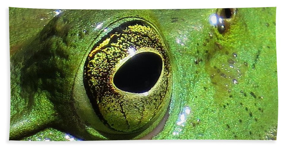 Frog Beach Towel featuring the photograph Frog's Eye by MTBobbins Photography