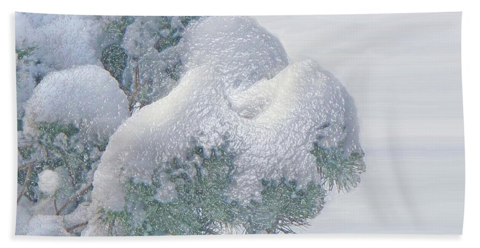 Winter Beach Towel featuring the photograph Frozen Beauty by Ian MacDonald