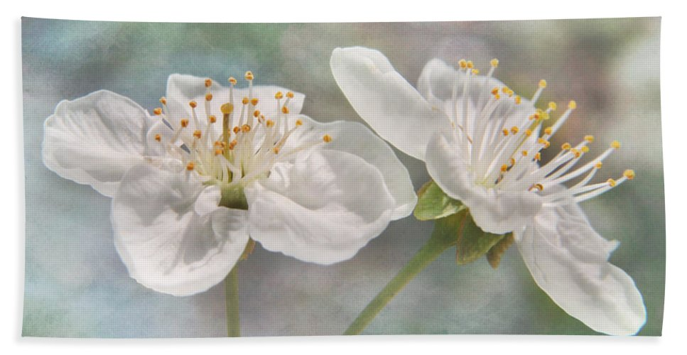 Bloom Beach Towel featuring the photograph Fruit Blossoms by David and Carol Kelly