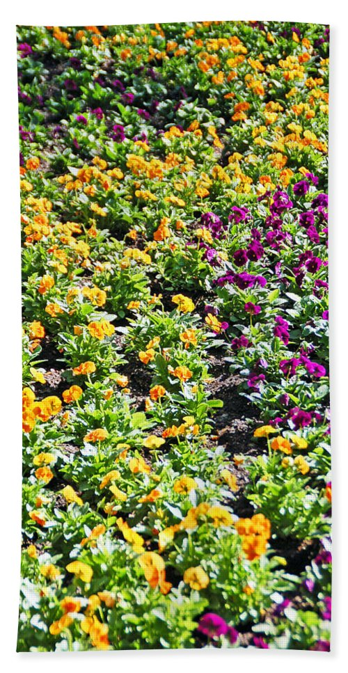 Flower Beach Towel featuring the photograph Garden Flowers by Aimee L Maher ALM GALLERY