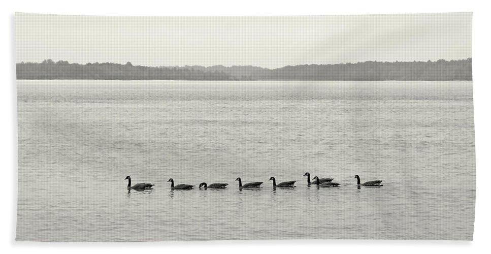 Nature Beach Towel featuring the photograph Geese In A Row by Peg Urban