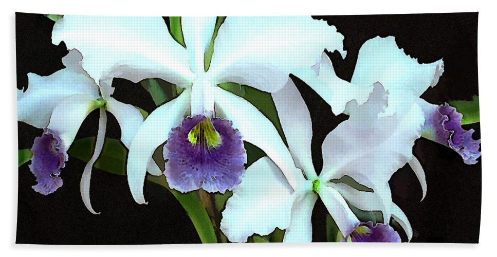 Orchid Beach Towel featuring the painting Ghostly Cattleyas by Elaine Plesser