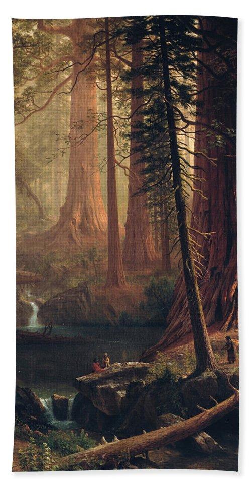 Albert Bierstadt Beach Towel featuring the painting Giant Redwood Trees Of California by Albert Bierstadt