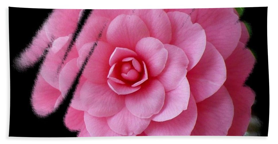 Camellia Beach Towel featuring the photograph God's Paintbrush by Carol Groenen