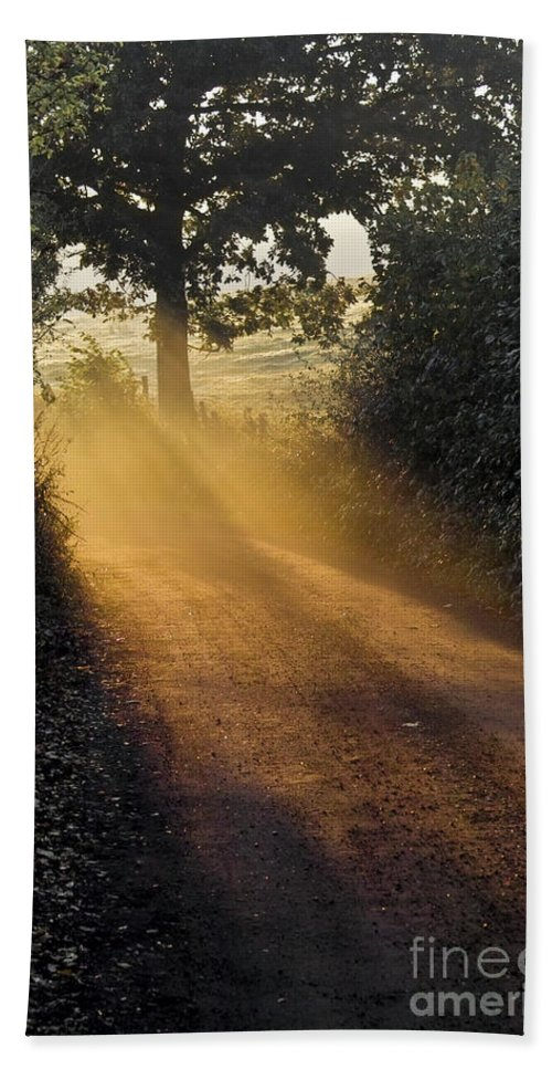 Landscape Beach Towel featuring the photograph Golden Pathway by Heiko Koehrer-Wagner