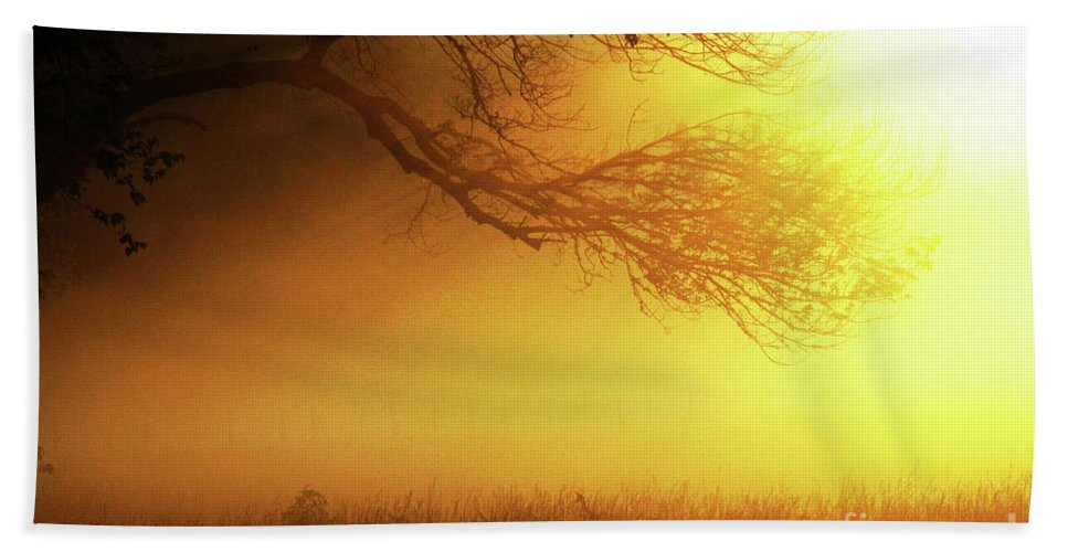 Tree Beach Towel featuring the photograph Golden Rays by Douglas Stucky