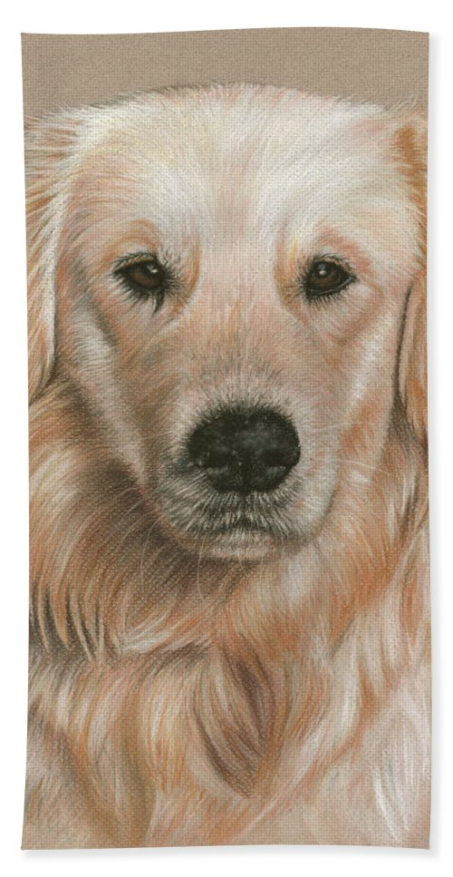 Dog Beach Towel featuring the pastel Golden Retriever Portrait by Nicole Zeug