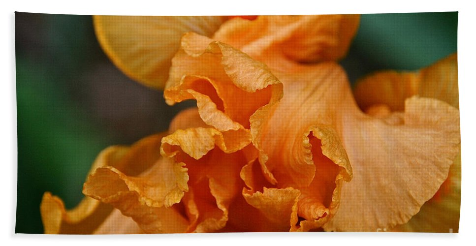 Flower Beach Towel featuring the photograph Good Show by Susan Herber