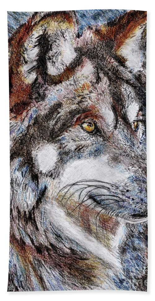 Mccombie Beach Towel featuring the drawing Gray Wolf Watches And Waits by J McCombie