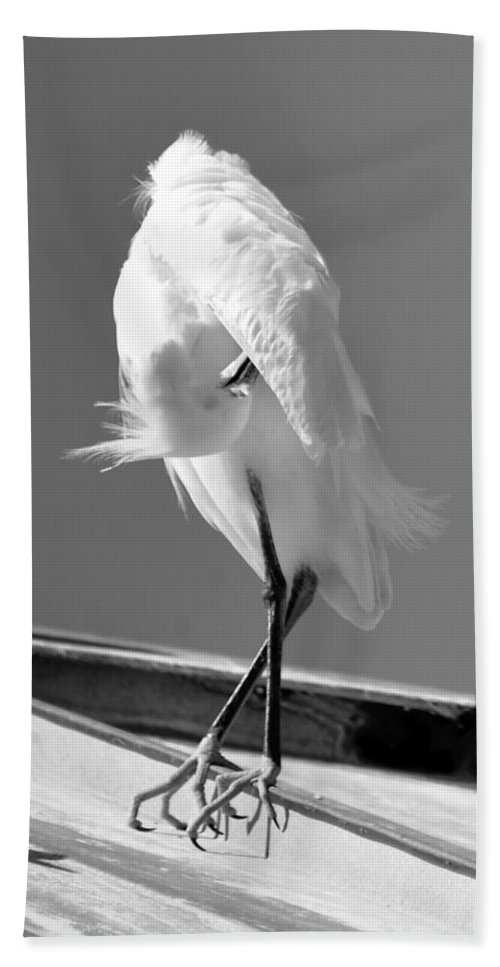 Great Egret Beach Towel featuring the photograph Great Beautiful Egret by David Lee Thompson