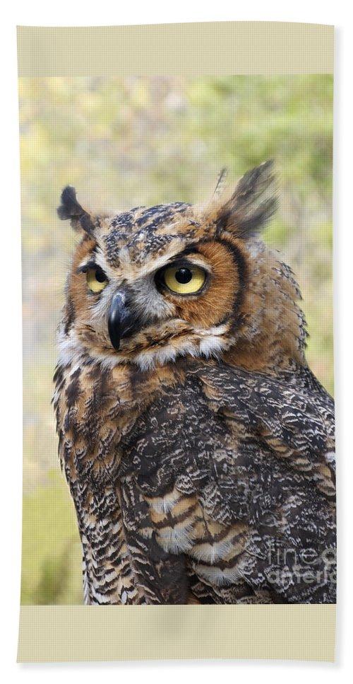 Owl Beach Towel featuring the photograph Great Horned Owl by Ann Horn