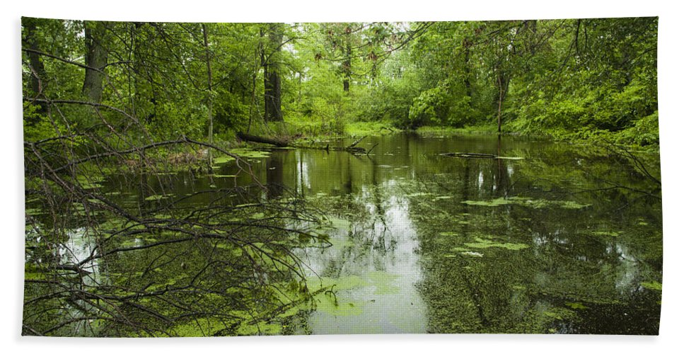 Green Pond Beach Towel featuring the photograph Green Blossoms On Pond by Jerry Cowart