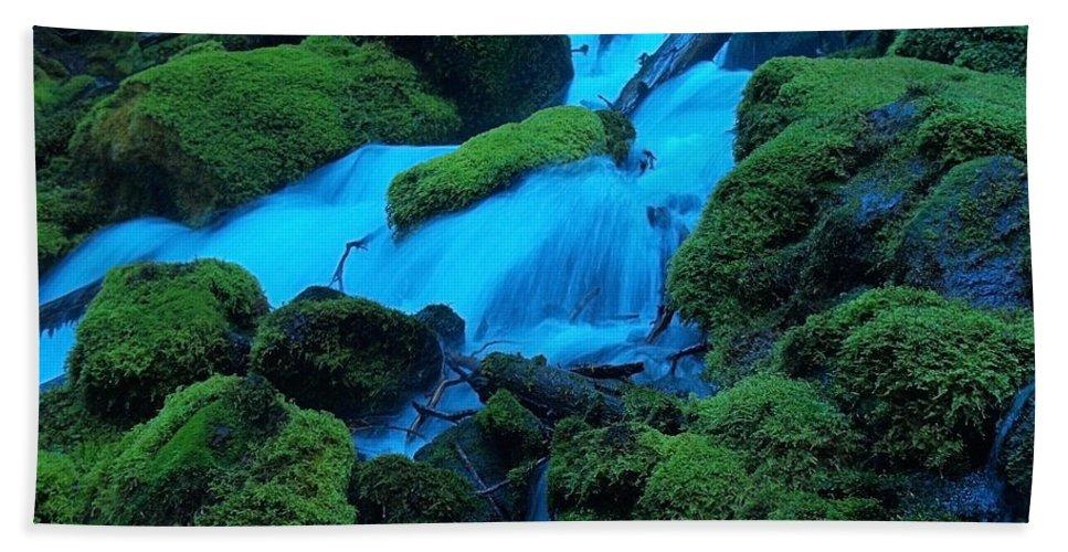 Water Beach Towel featuring the photograph Green Velvet Moss by Teri Schuster