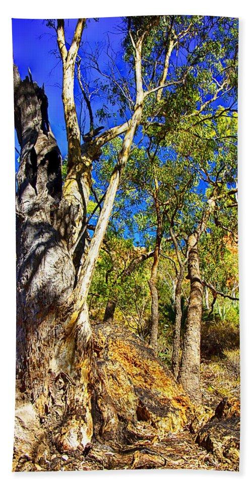 Gum Tree Ridge Beach Towel featuring the photograph Gum Tree Ridge by Douglas Barnard