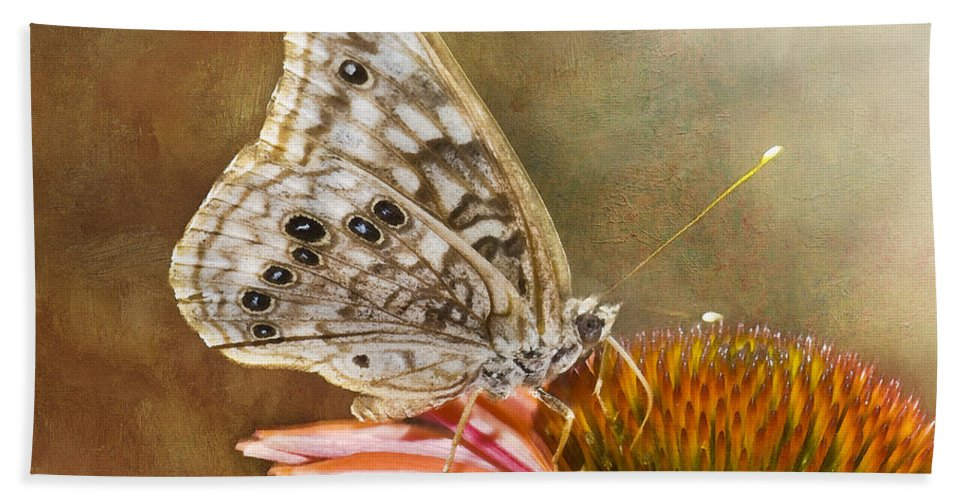 Butterfly Beach Towel featuring the photograph Hackberry Emperor Butterfly 2 by Betty LaRue