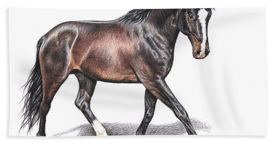 Horse Beach Towel featuring the drawing Hannoveraner by Nicole Zeug