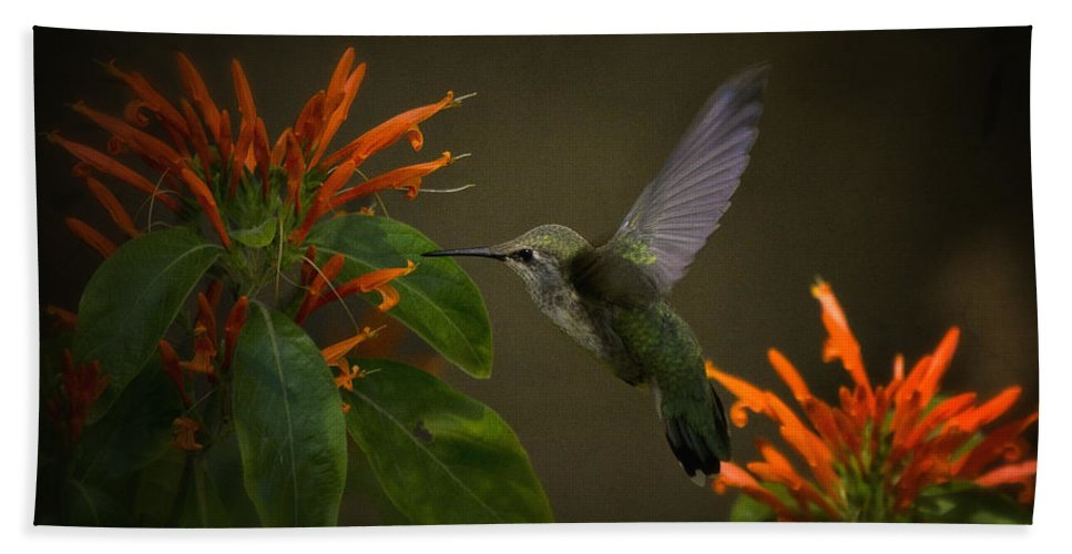 Hummingbird Beach Towel featuring the photograph Happy Little Hummingbird by Saija Lehtonen