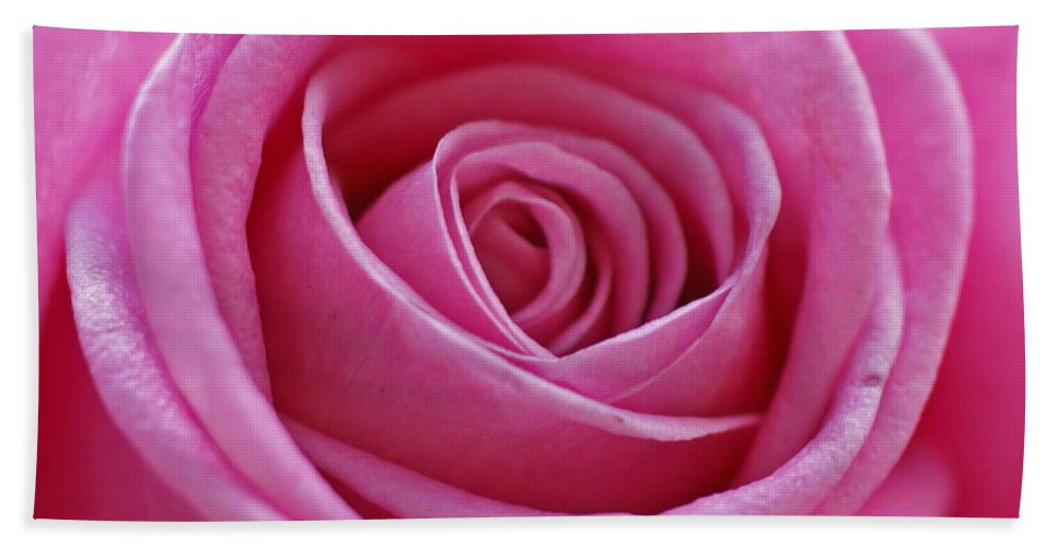 Pink Beach Towel featuring the photograph Happy Pink by Carol Lynch