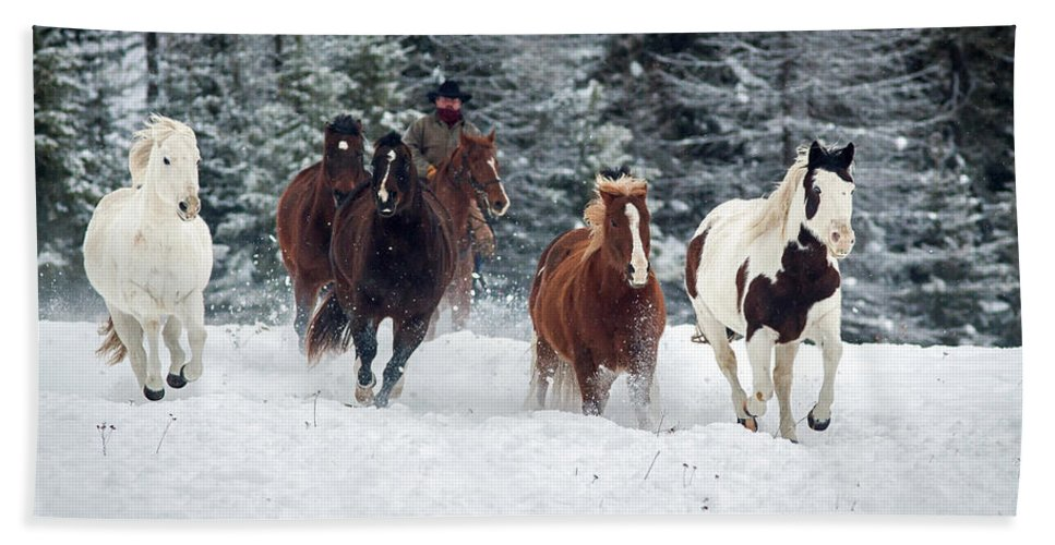 Horses Beach Towel featuring the photograph Head Em Up Move Em Out by Jack Bell