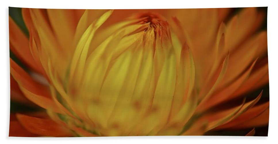 Orange Beach Towel featuring the photograph Heavenly Light by Frozen in Time Fine Art Photography