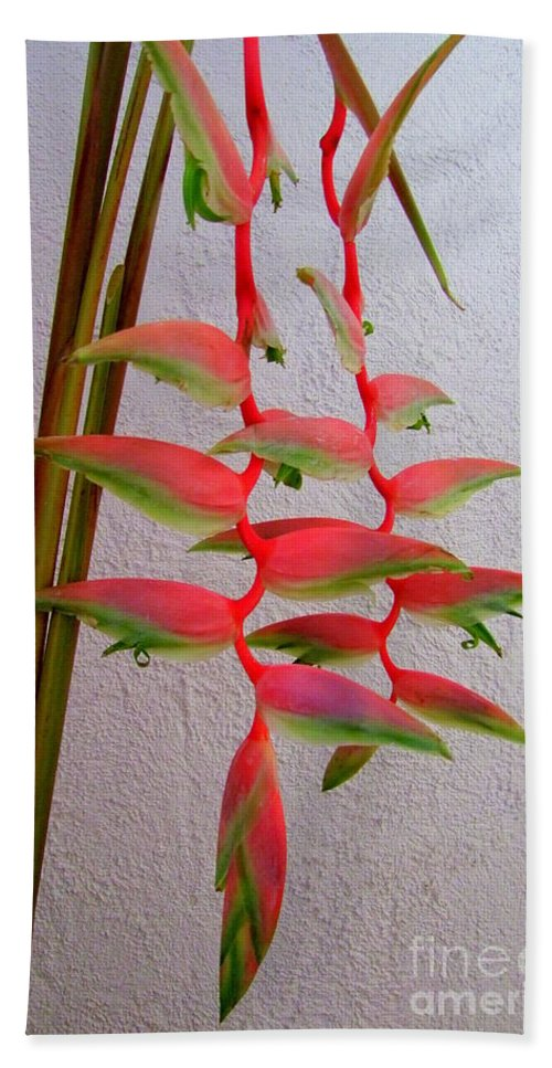 Flower Beach Towel featuring the photograph Heliconia Platystachys by Mary Deal