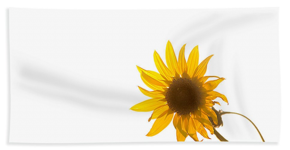 California Beach Towel featuring the photograph Hello Yellow by Peter Tellone