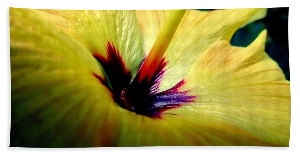 Flowers Beach Towel featuring the photograph Her Majesty by Karen Wiles