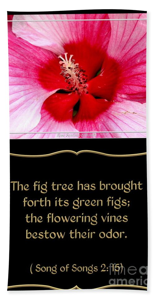 Hibiscus Closeup With Bible Quote From Song Of Songs Beach Towel For