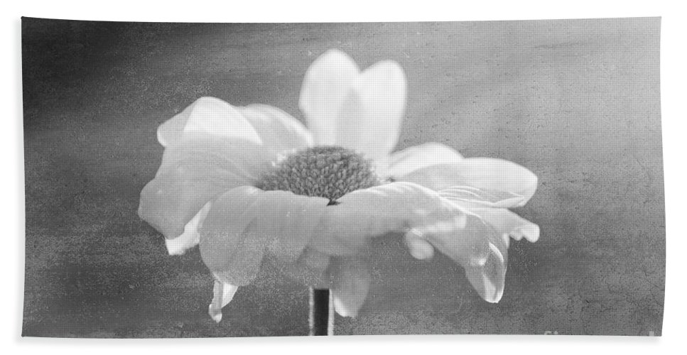 Flower Beach Towel featuring the photograph Highlighted by Aimelle