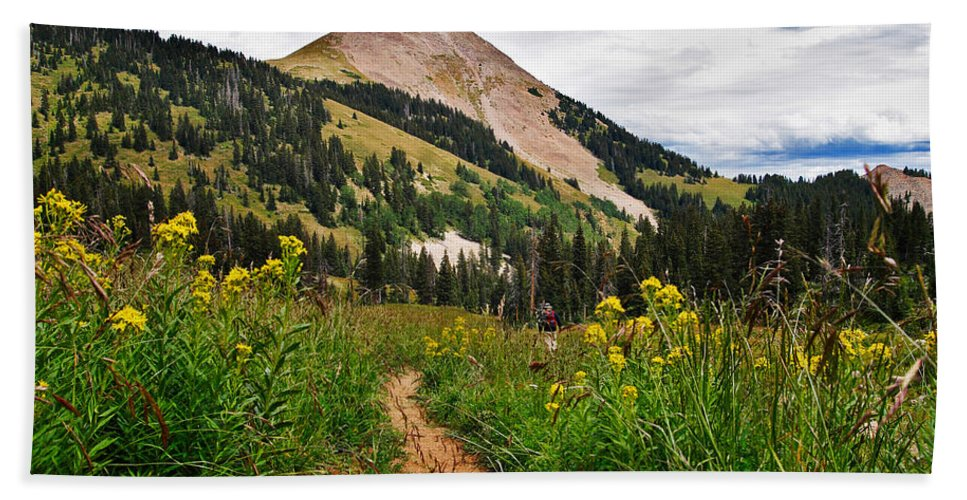 3scape Beach Towel featuring the photograph Hiking in La Sal by Adam Romanowicz