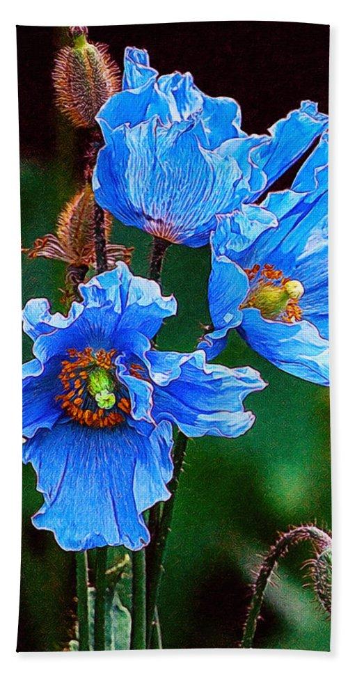 Himalayan blue poppy flower beach towel for sale by jeelan clark beautiful beach towel featuring the painting himalayan blue poppy flower by jeelan clark mightylinksfo