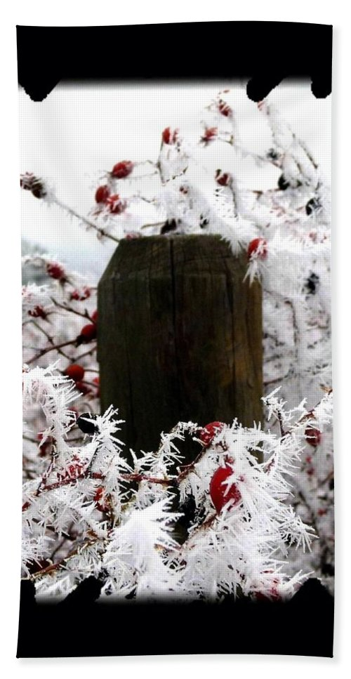 Hoarfrost 17 Beach Towel featuring the photograph Hoarfrost 17 by Will Borden