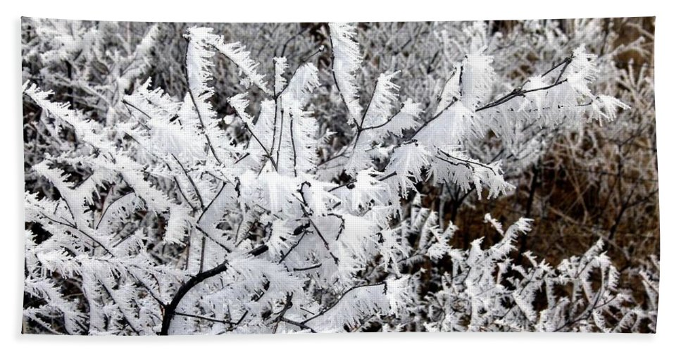 Hoarfrost 18 Beach Towel featuring the photograph Hoarfrost 18 by Will Borden