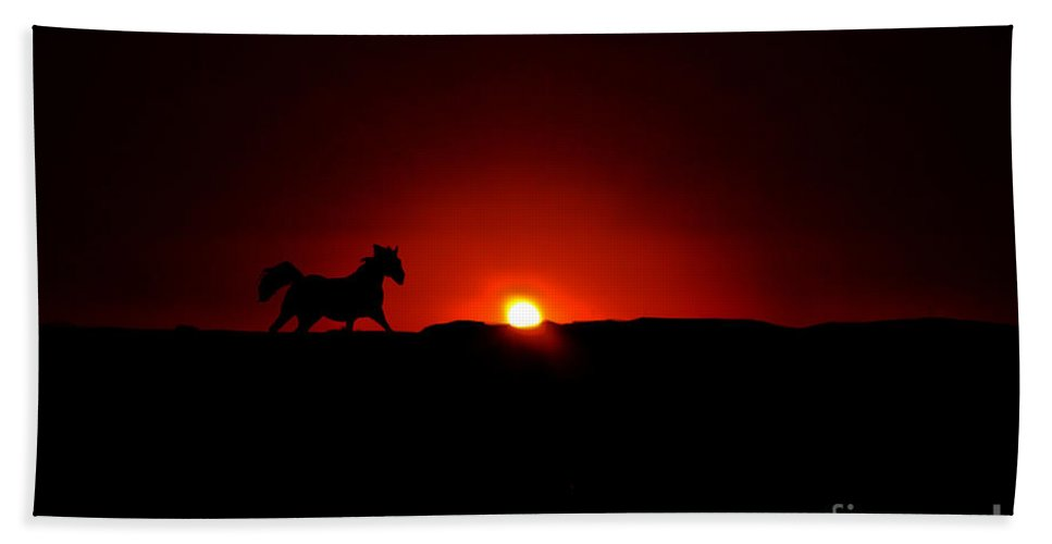 Horse Beach Towel featuring the photograph Horse And Sunset by Tommy Anderson