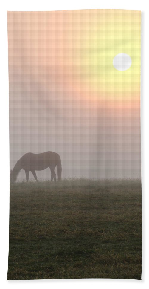 Horse Beach Towel featuring the photograph Horse At Sunrise by Bill Cannon
