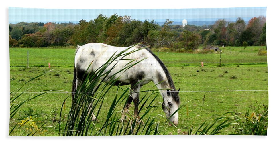 Horses Beach Towel featuring the photograph Horse Grazing In Field by Rose Santuci-Sofranko