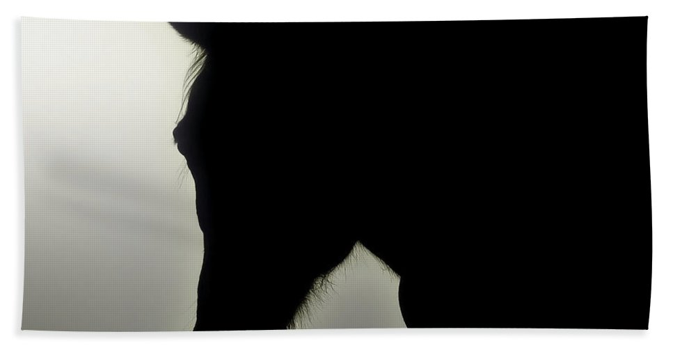 Horse Beach Towel featuring the photograph Horse Illusion by John Cardamone