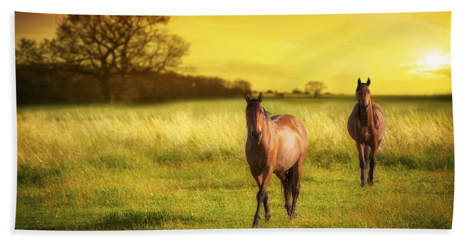 Horse Beach Towel featuring the photograph Horses At Sunset by Amanda Elwell