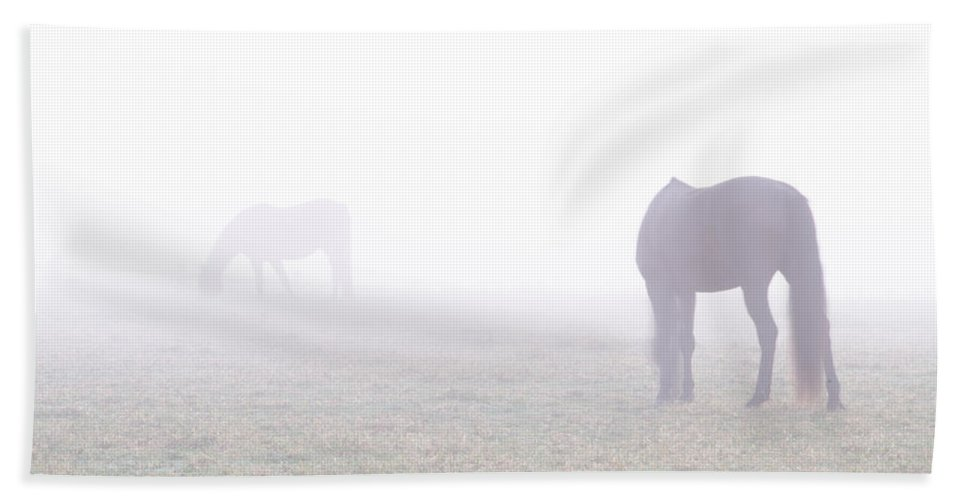 Horses Beach Towel featuring the photograph Horses In Fog by Bill Cannon