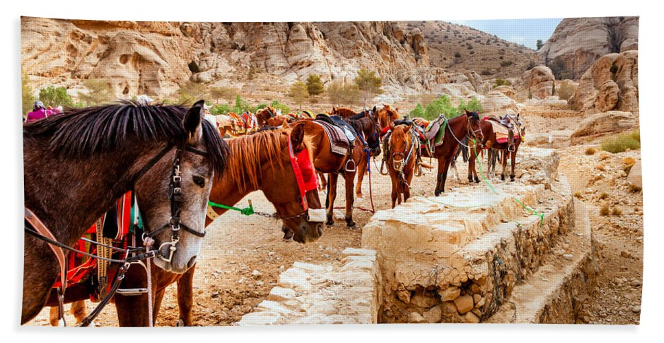 Horses Beach Towel featuring the photograph Horses Of Petra by Alexey Stiop