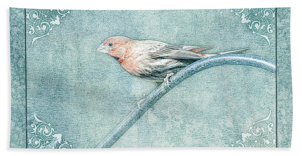 Nature Beach Towel featuring the photograph House Finch With Colored Sketch Effect by Debbie Portwood