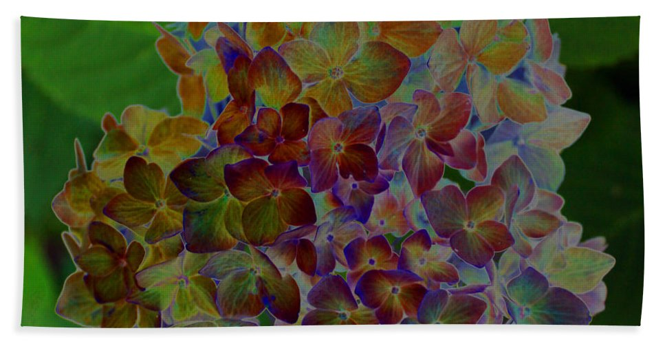 Hydranga Beach Towel featuring the photograph Hydrangea Solorized by Carolyn Stagger Cokley