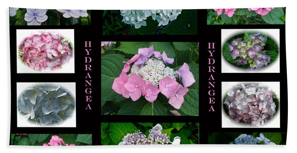 Hydrangea Beach Towel featuring the photograph Hydrangeas On Parade by Mother Nature