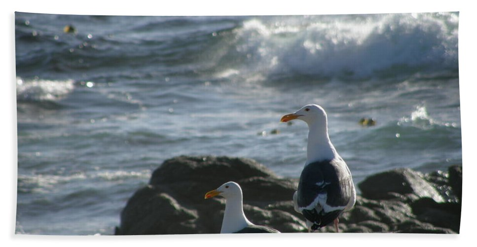Seagulls Beach Towel featuring the photograph I Love Retirement by Bev Conover